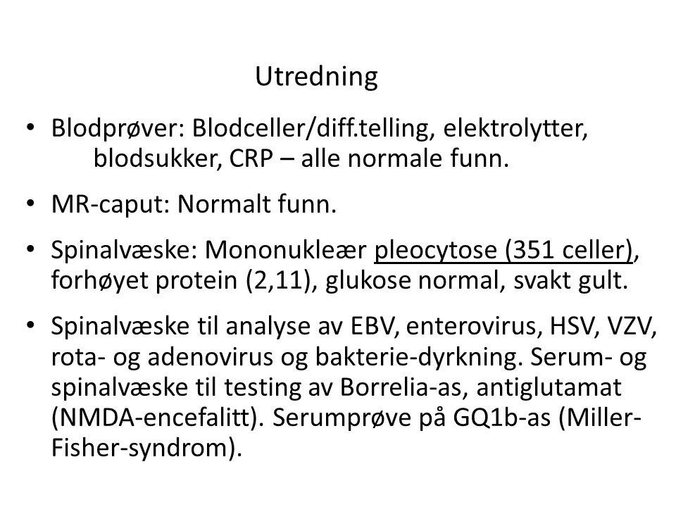 Utredning Blodprøver: Blodceller/diff.telling, elektrolytter, blodsukker, CRP – alle normale funn.