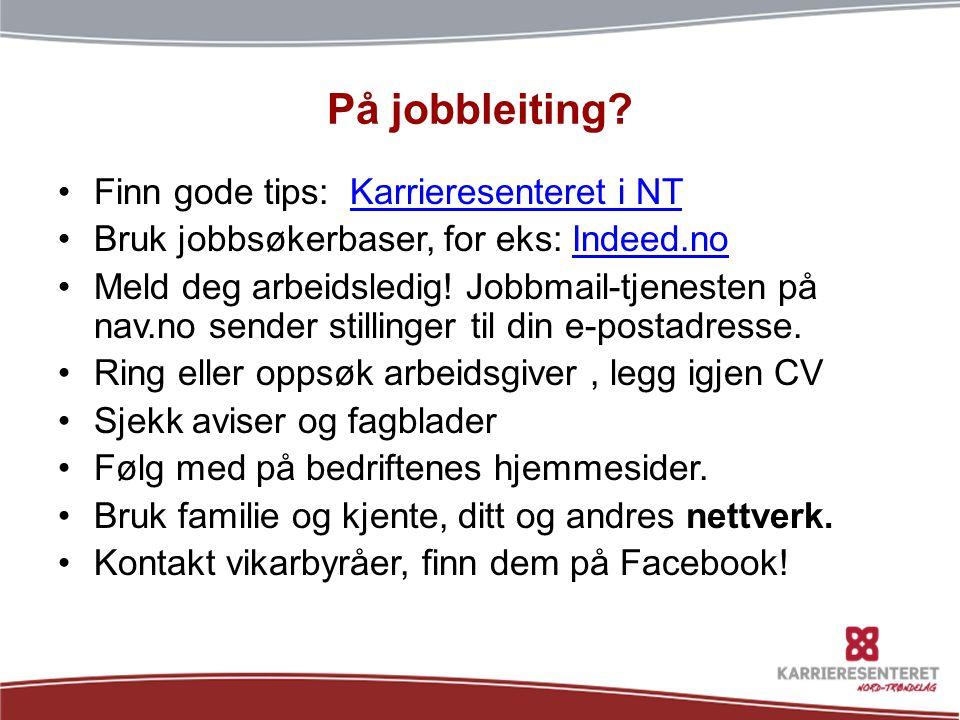På jobbleiting Finn gode tips: Karrieresenteret i NT