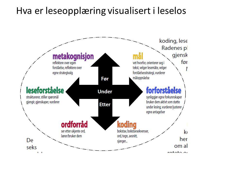 Hva er leseopplæring visualisert i leselos