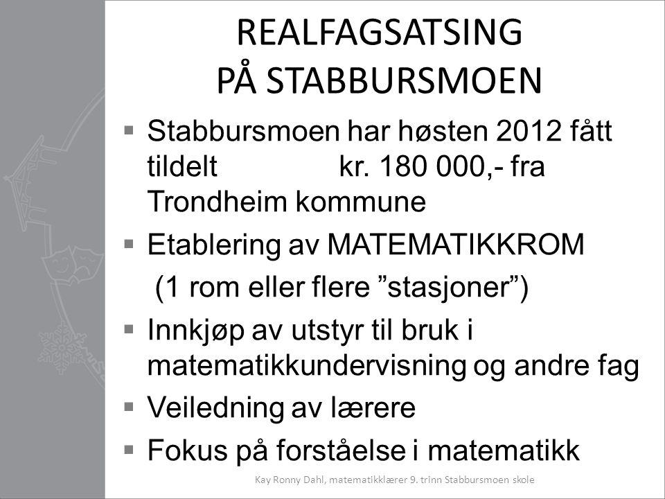 REALFAGSATSING PÅ STABBURSMOEN