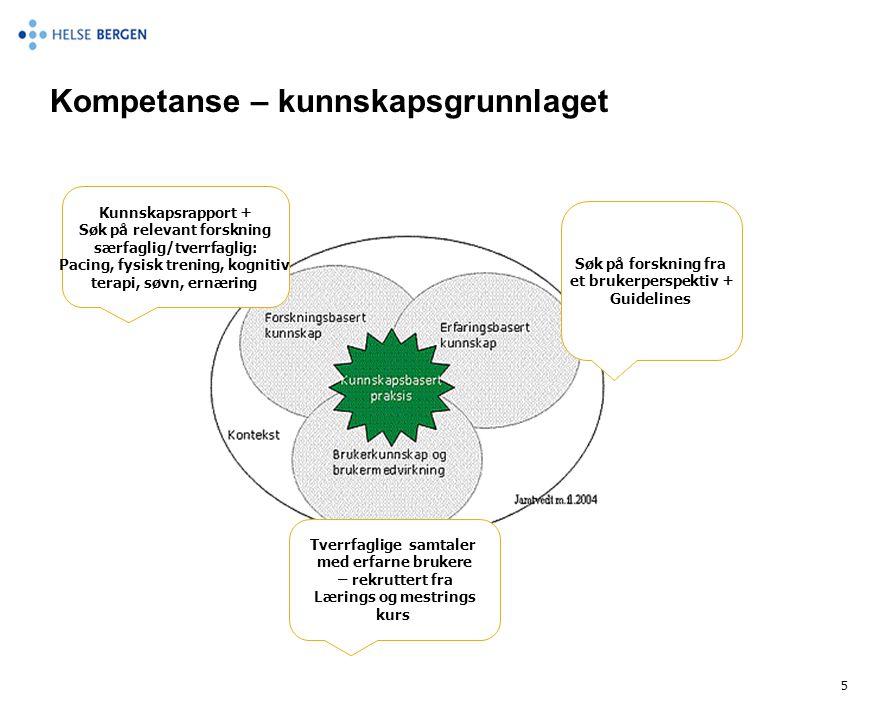Kompetanse – kunnskapsgrunnlaget