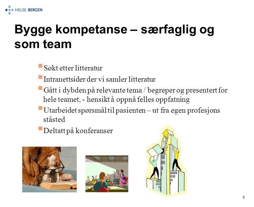 Bygge kompetanse – særfaglig og som team