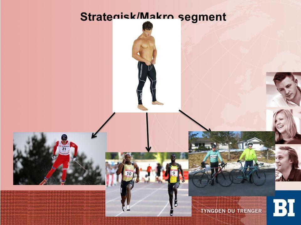 Strategisk/Makro segment