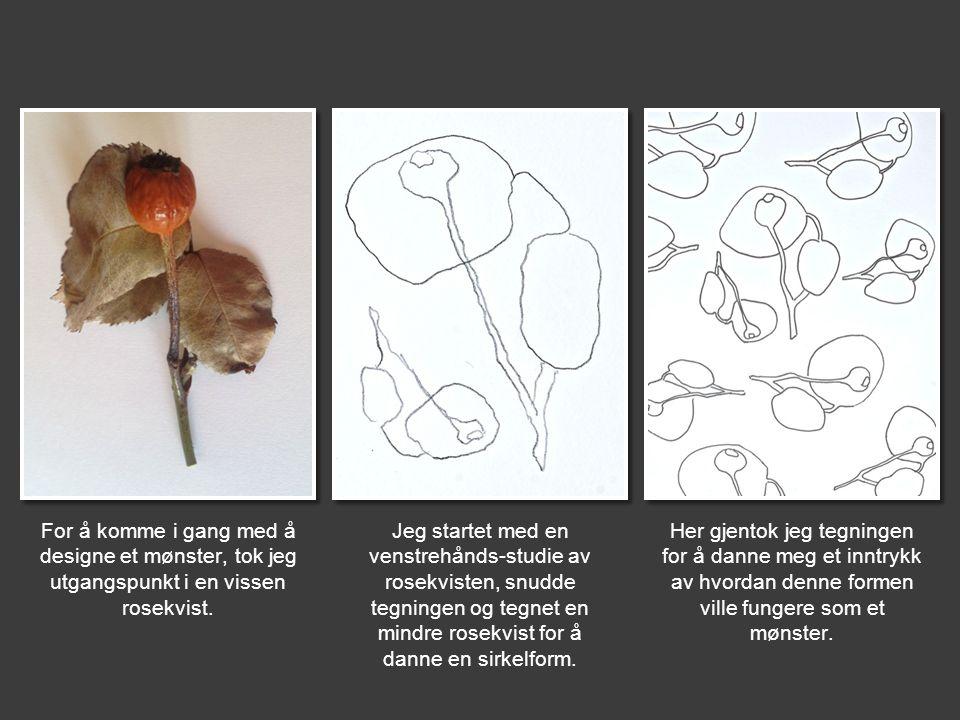 For å komme i gang med å designe et mønster, tok jeg utgangspunkt i en vissen rosekvist.