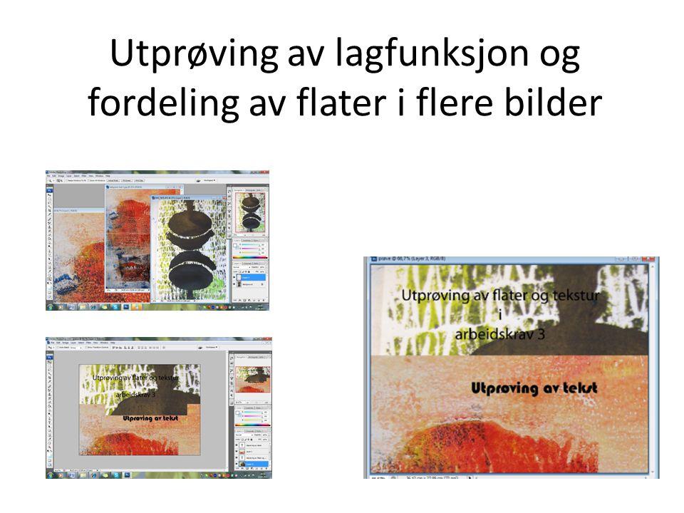 Utprøving av lagfunksjon og fordeling av flater i flere bilder