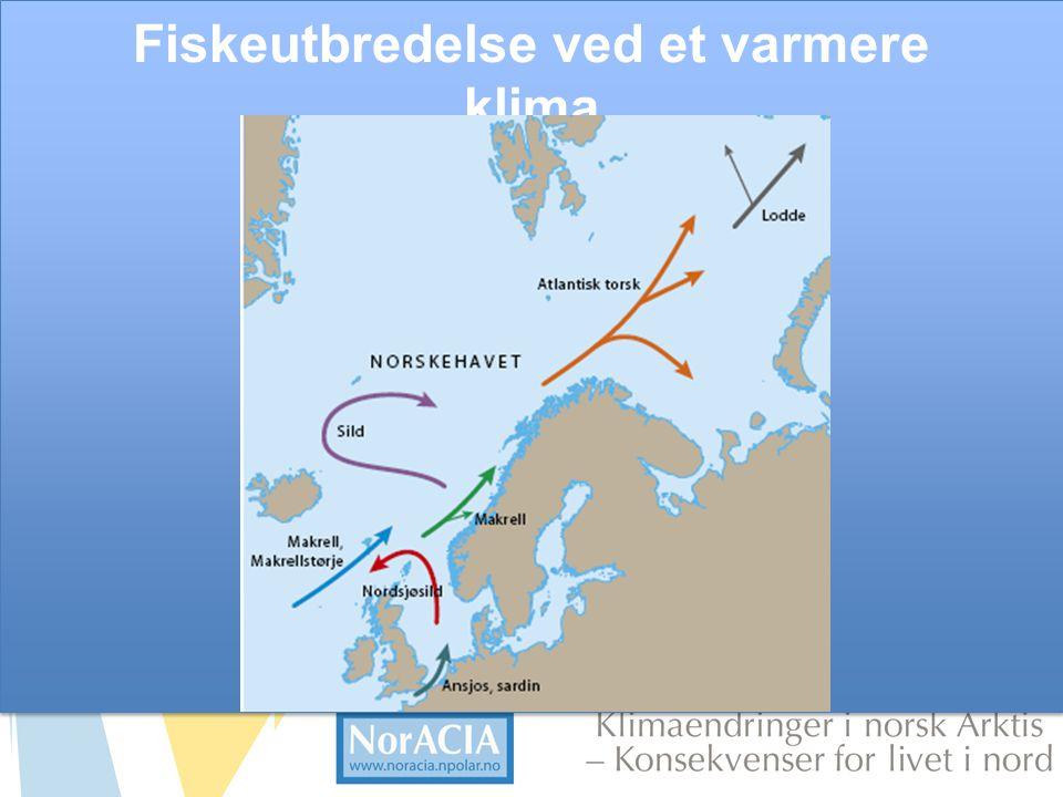 Fiskeutbredelse ved et varmere klima