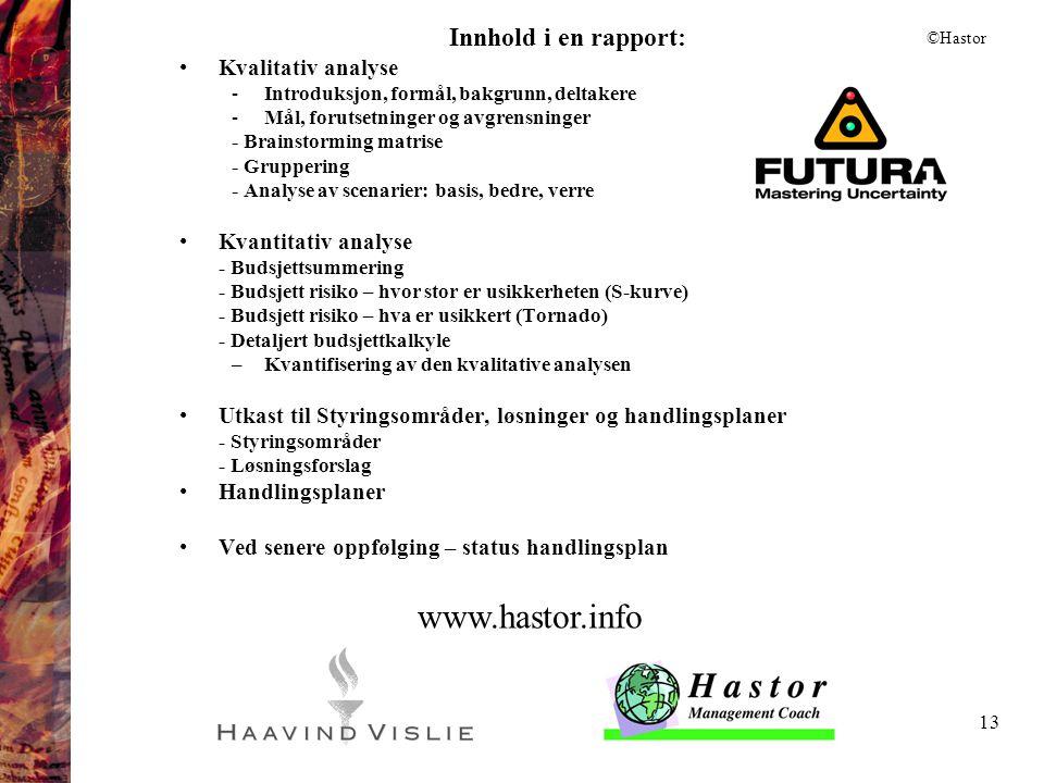 www.hastor.info Innhold i en rapport: Kvalitativ analyse