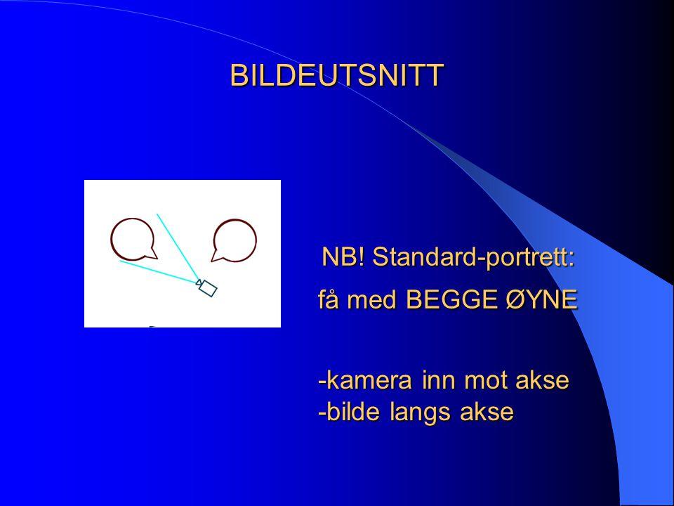 NB! Standard-portrett: få med BEGGE ØYNE