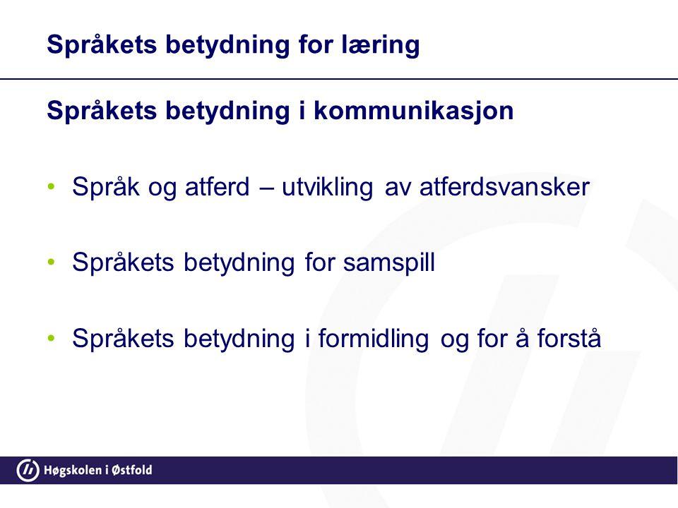 Språkets betydning for læring