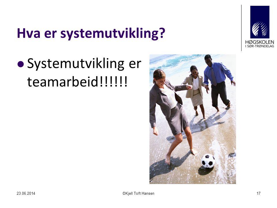 Hva er systemutvikling