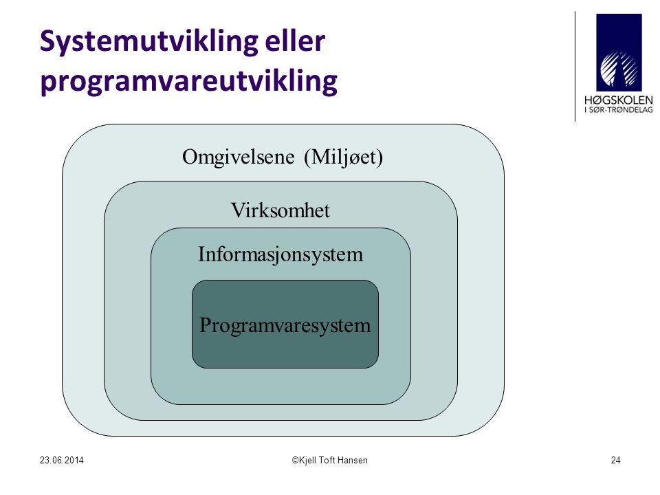 Systemutvikling eller programvareutvikling