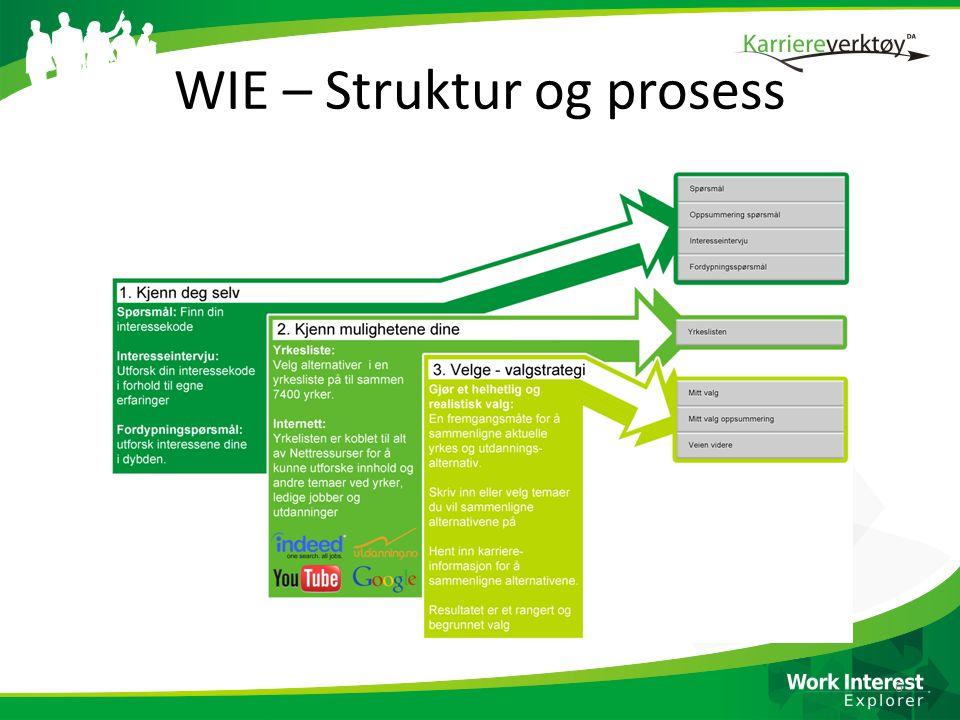 WIE – Struktur og prosess
