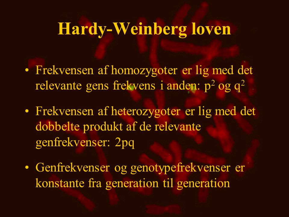 Hardy-Weinberg loven Frekvensen af homozygoter er lig med det relevante gens frekvens i anden: p2 og q2.