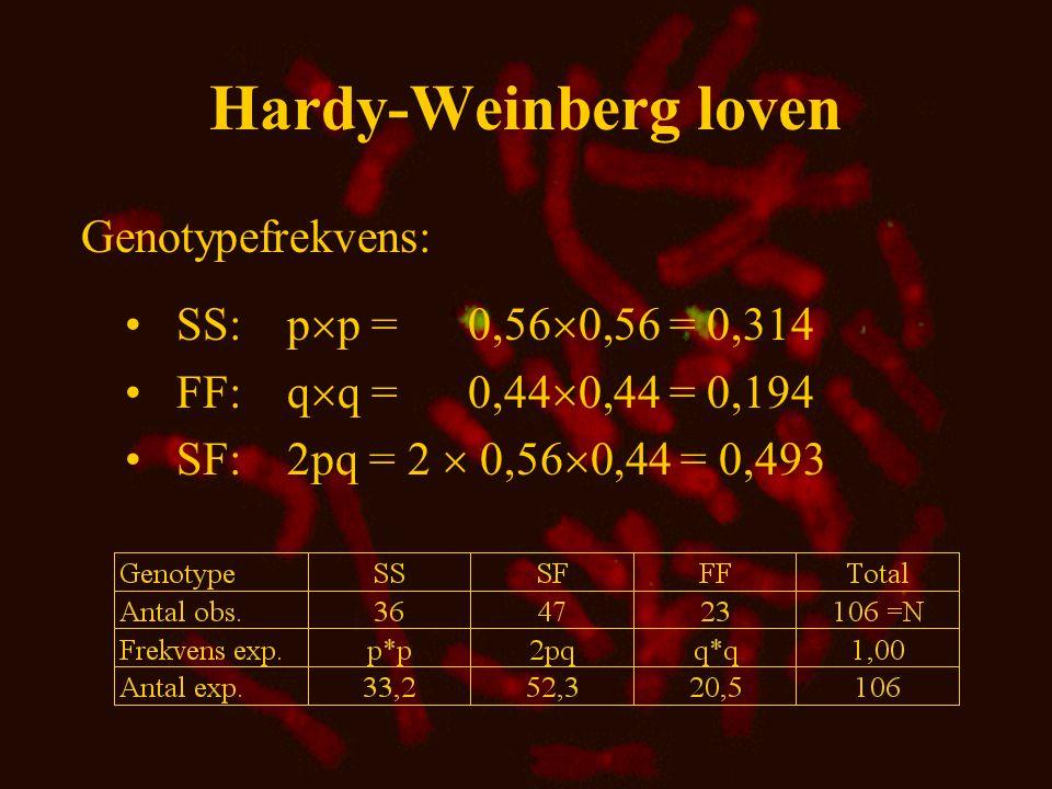 Hardy-Weinberg loven Genotypefrekvens: SS: pp = 0,560,56 = 0,314