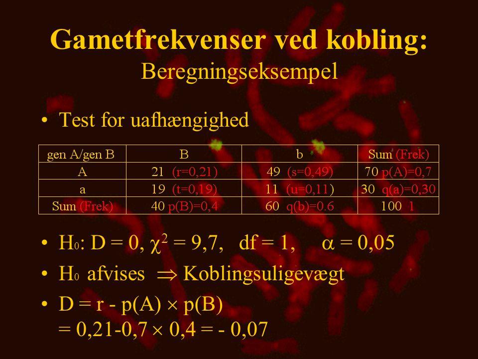 Gametfrekvenser ved kobling: Beregningseksempel