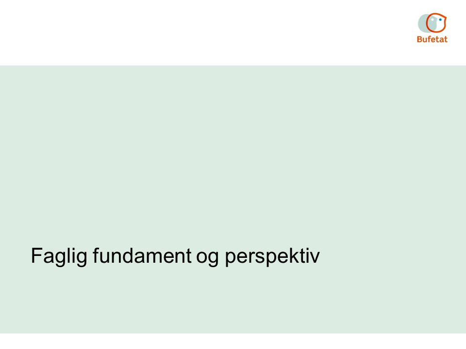 Faglig fundament og perspektiv