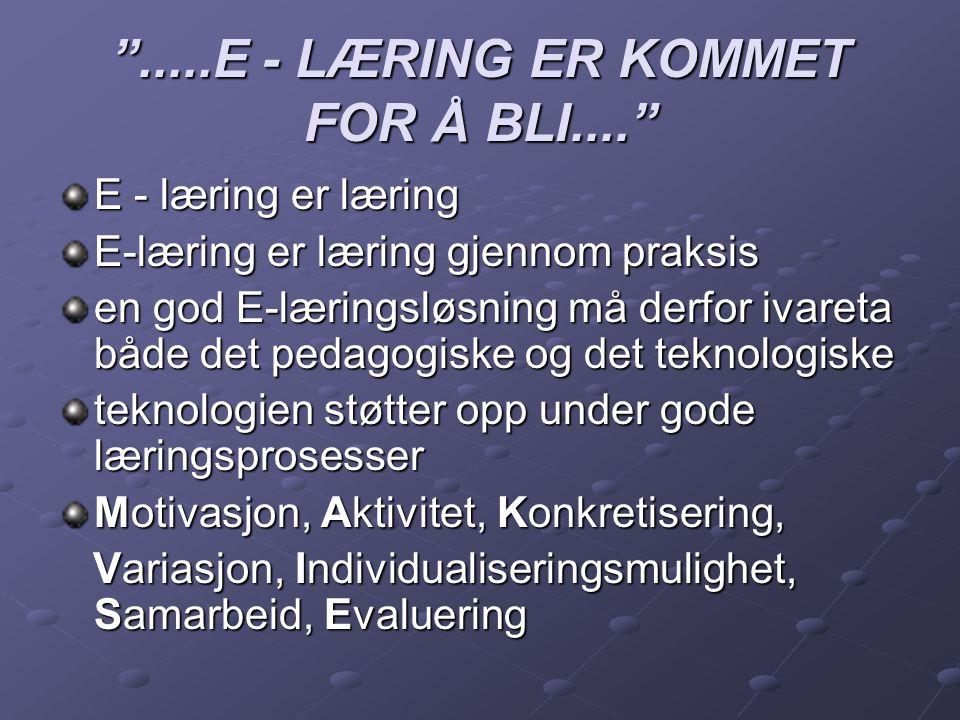 .....E - LÆRING ER KOMMET FOR Å BLI....