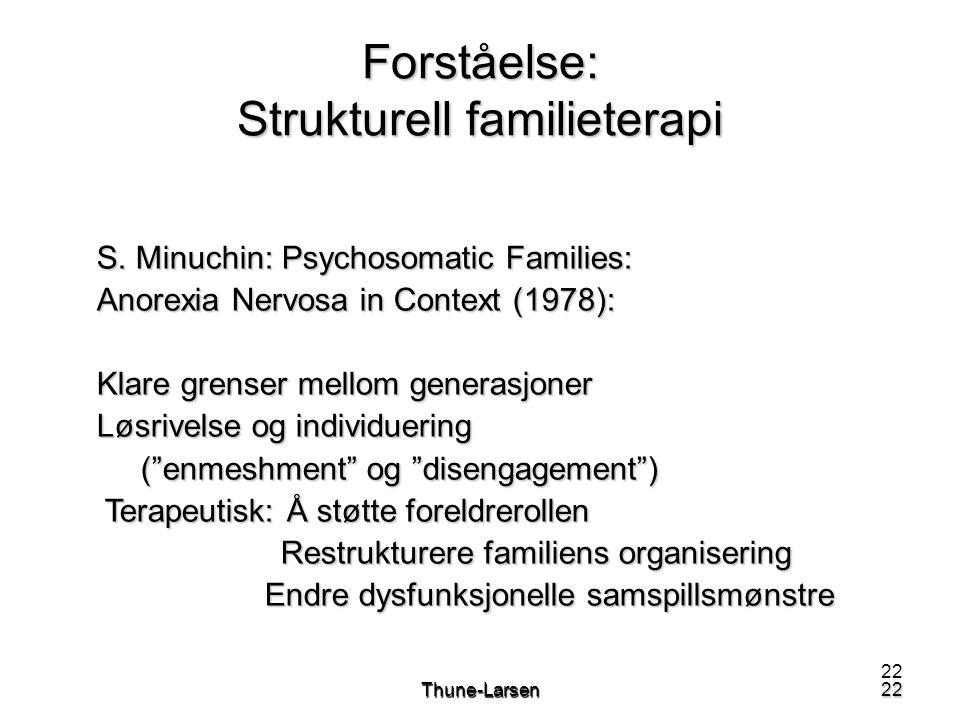 Forståelse: Strukturell familieterapi