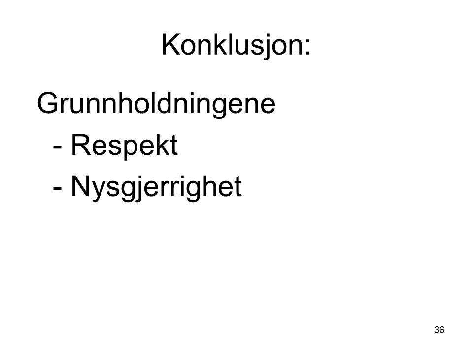Konklusjon: Grunnholdningene - Respekt - Nysgjerrighet
