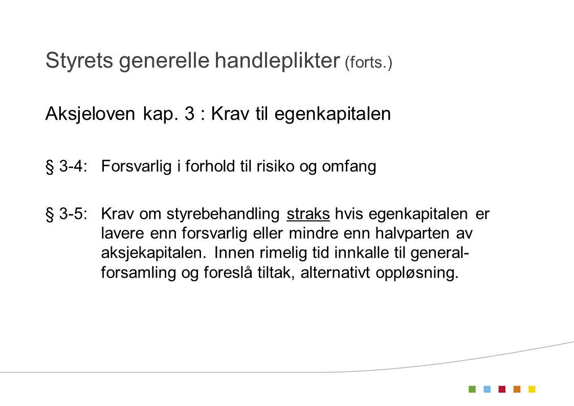 Styrets generelle handleplikter (forts.)