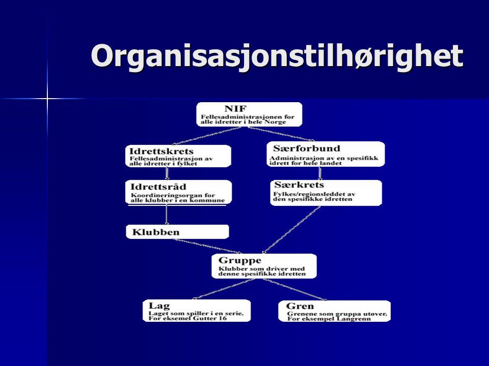 Organisasjonstilhørighet