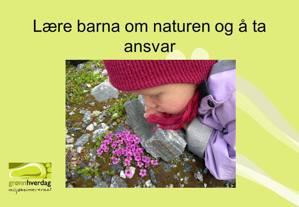 Lære barna om naturen og å ta ansvar