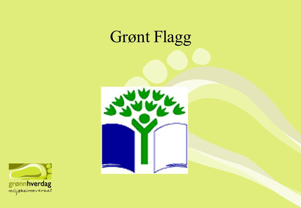 Grønt Flagg