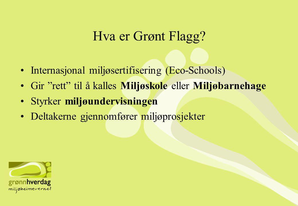Hva er Grønt Flagg Internasjonal miljøsertifisering (Eco-Schools)