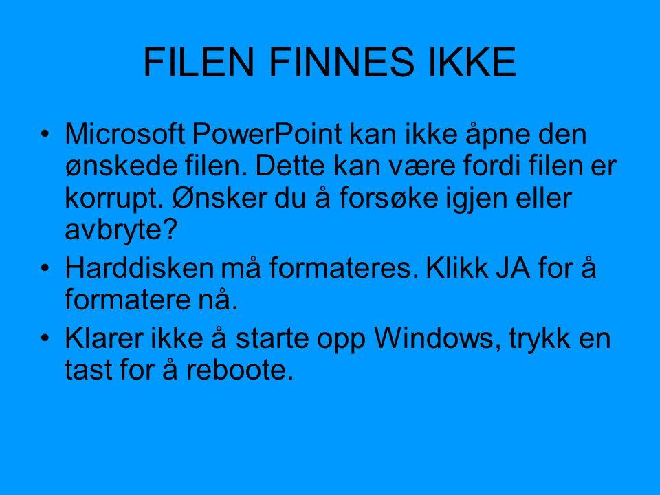 FILEN FINNES IKKE