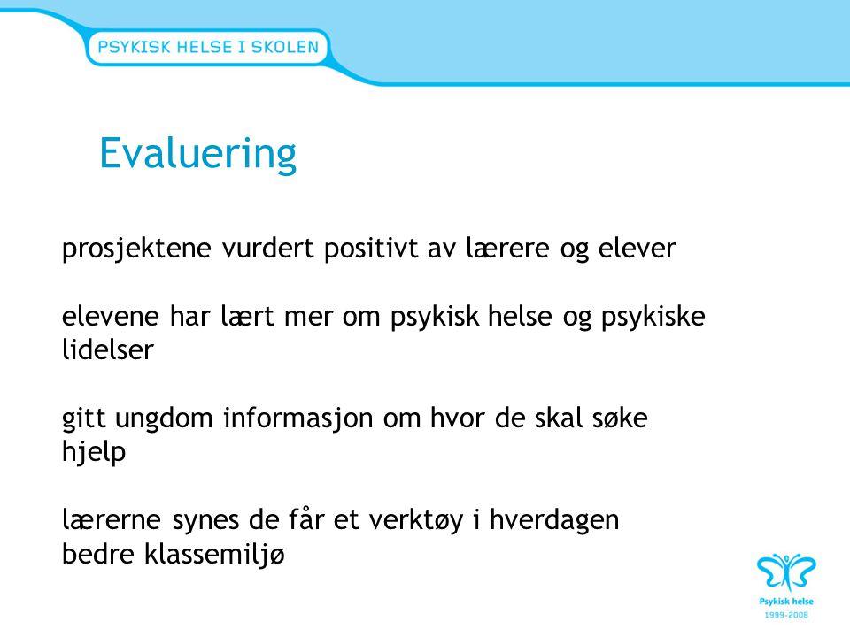 Evaluering prosjektene vurdert positivt av lærere og elever
