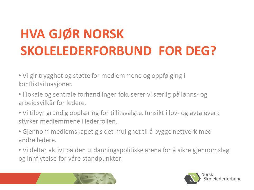 Hva gjør Norsk skolelederforbund for deg