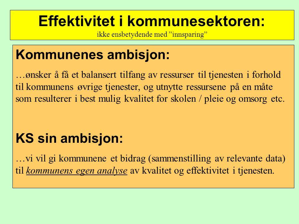 Effektivitet i kommunesektoren: