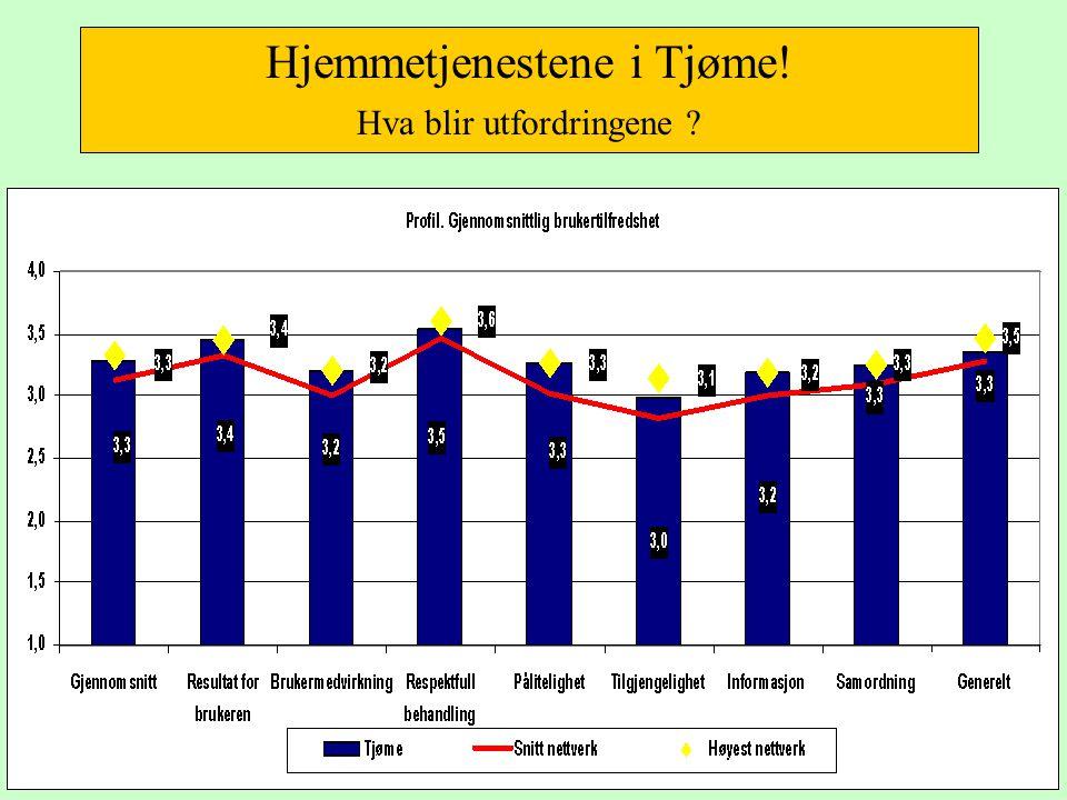 Hjemmetjenestene i Tjøme! Hva blir utfordringene