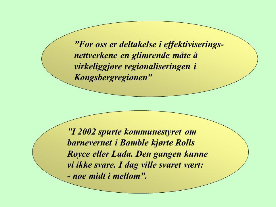 For oss er deltakelse i effektiviserings-nettverkene en glimrende måte å virkeliggjøre regionaliseringen i Kongsbergregionen