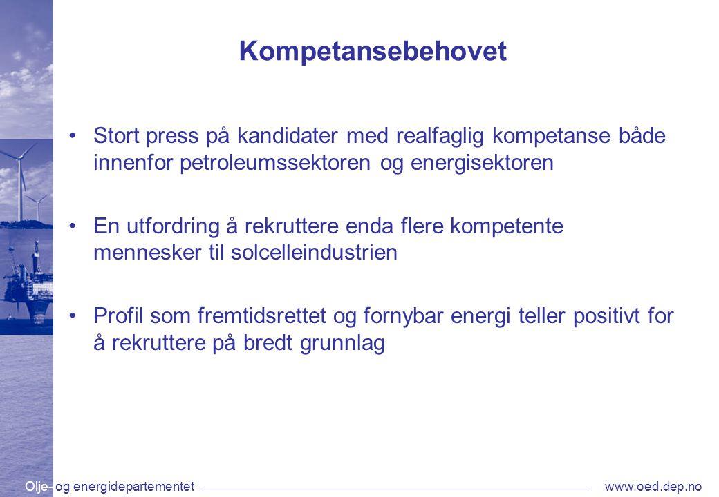 Kompetansebehovet Stort press på kandidater med realfaglig kompetanse både innenfor petroleumssektoren og energisektoren.