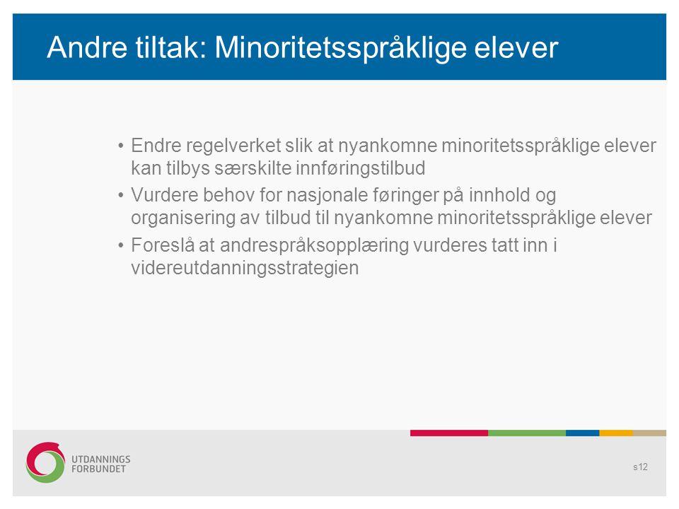 Andre tiltak: Minoritetsspråklige elever