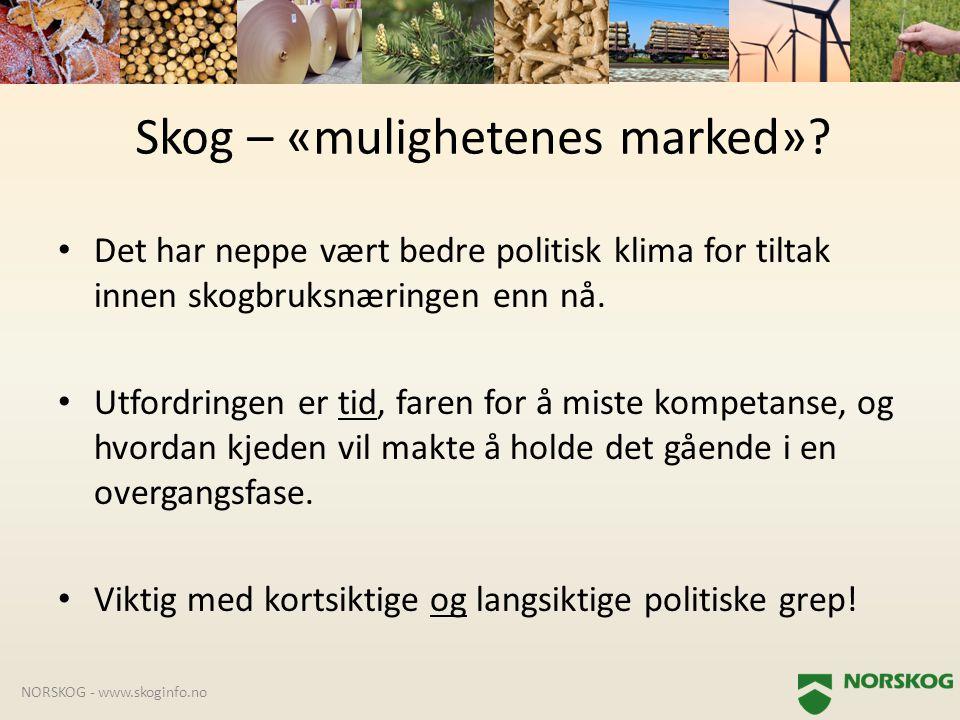 Skog – «mulighetenes marked»