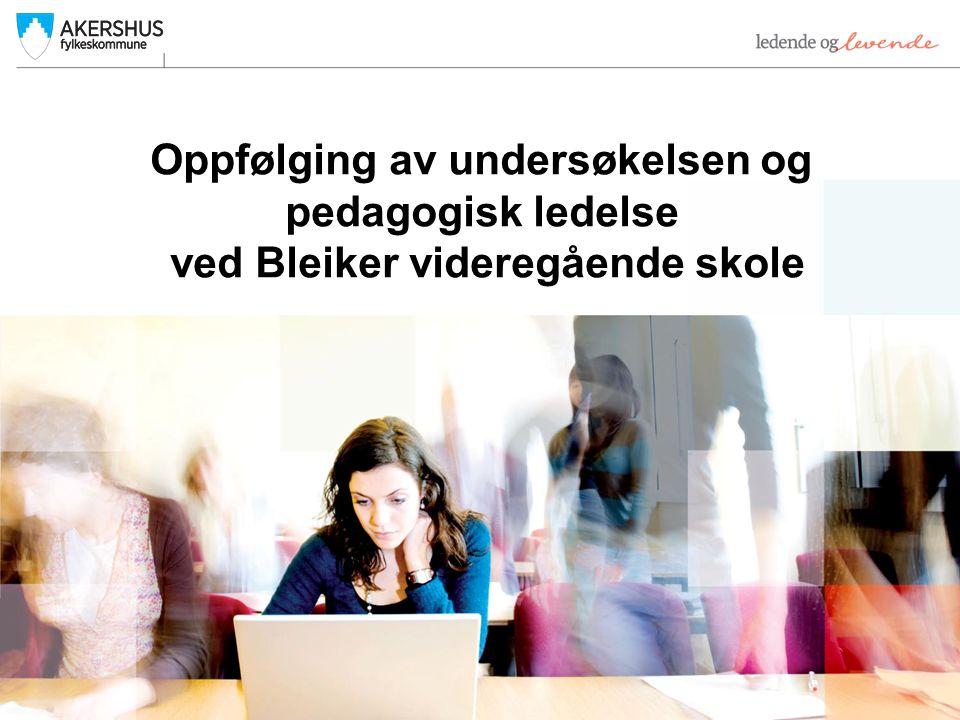 Oppfølging av undersøkelsen og pedagogisk ledelse ved Bleiker videregående skole