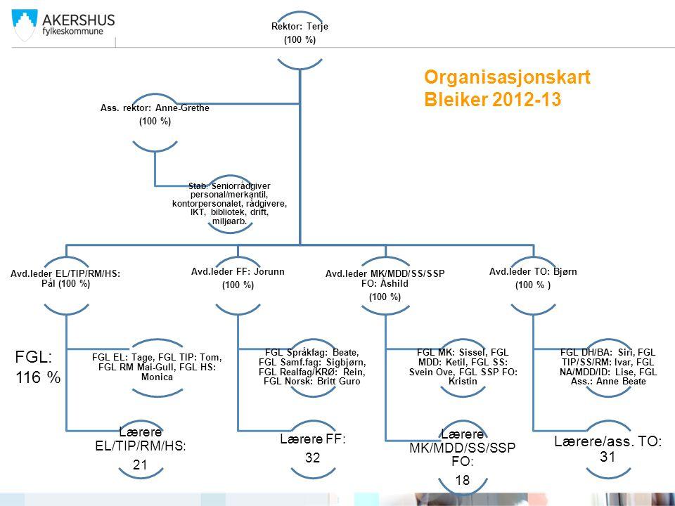 Organisasjonskart Bleiker 2012-13