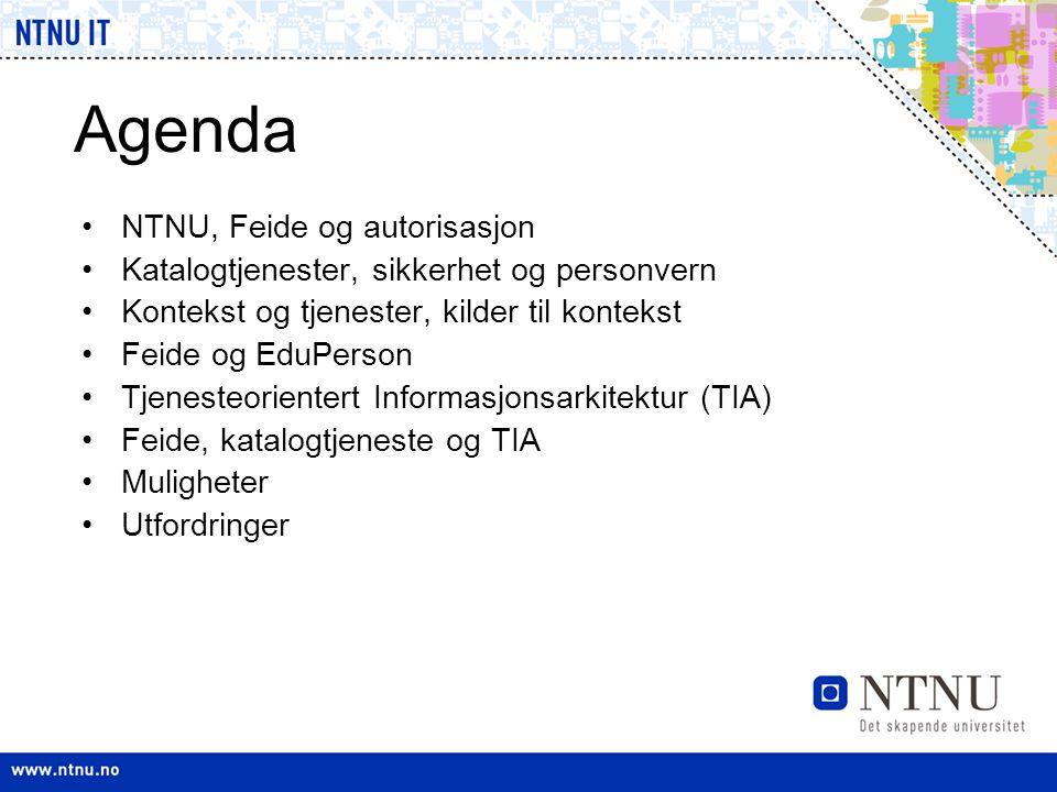 Agenda NTNU, Feide og autorisasjon