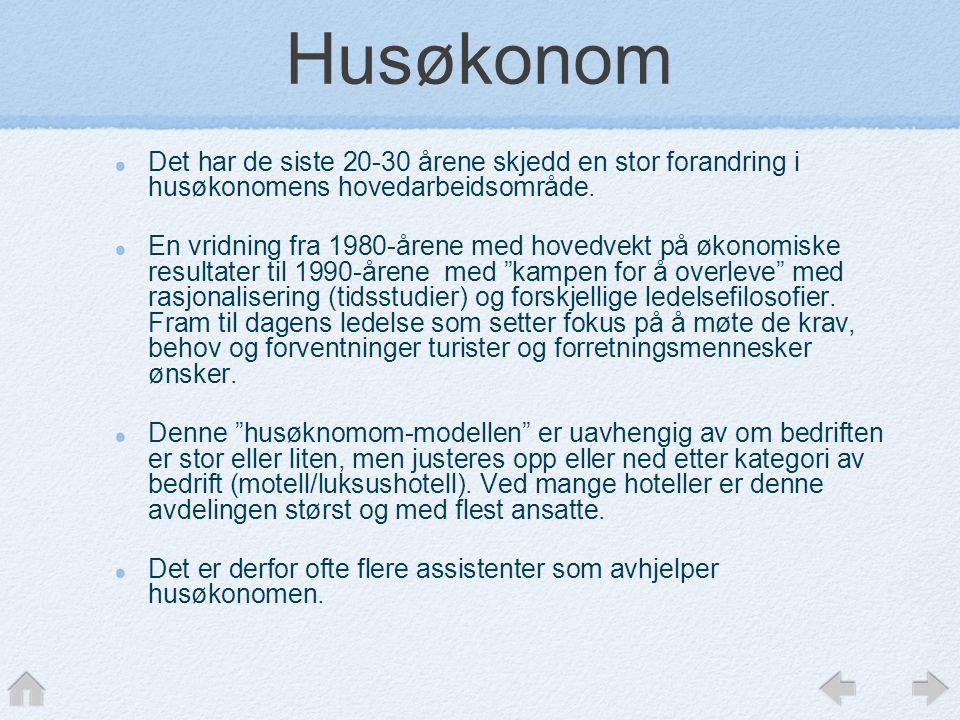 Husøkonom Det har de siste 20-30 årene skjedd en stor forandring i husøkonomens hovedarbeidsområde.