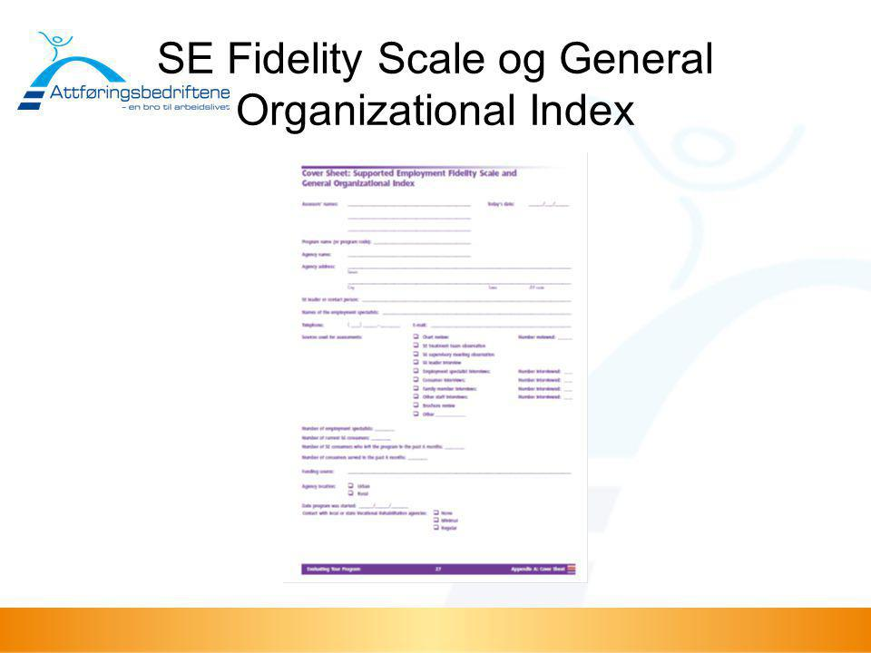 SE Fidelity Scale og General Organizational Index