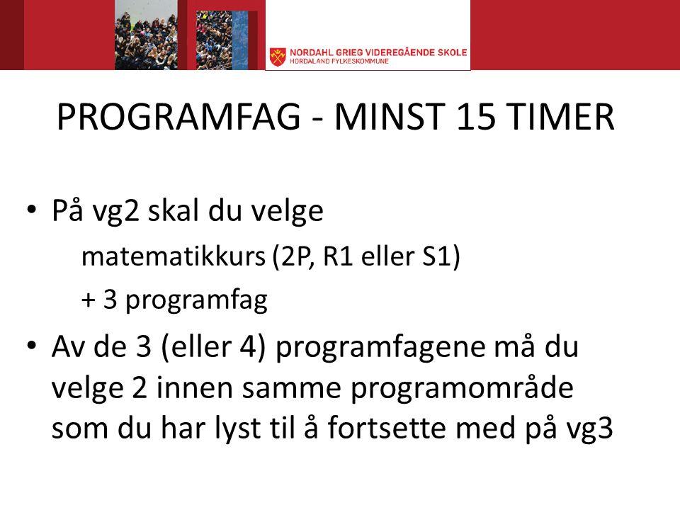 PROGRAMFAG - MINST 15 TIMER