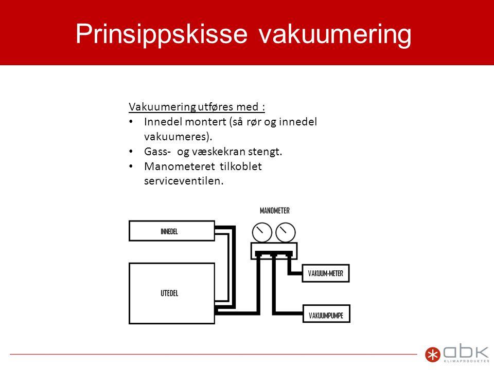 Prinsippskisse vakuumering