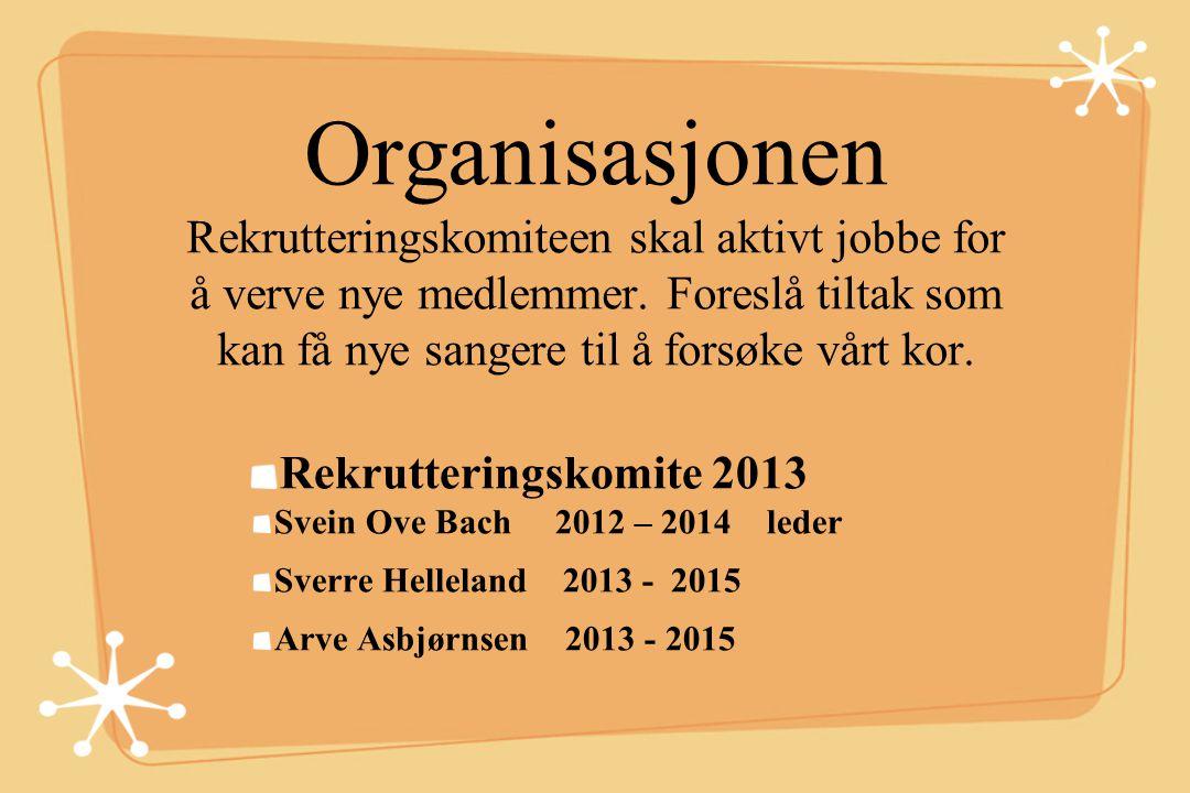 Organisasjonen Styret 2013 Formann: Lars Skeide til 2014