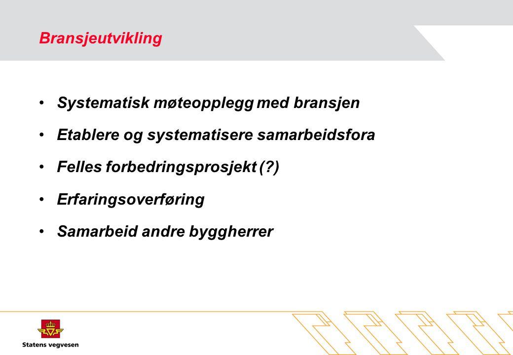 Bransjeutvikling Systematisk møteopplegg med bransjen. Etablere og systematisere samarbeidsfora. Felles forbedringsprosjekt ( )