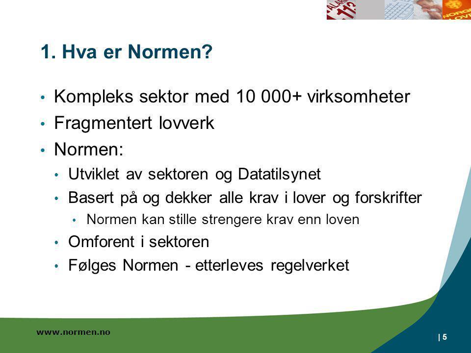 1. Hva er Normen Kompleks sektor med 10 000+ virksomheter