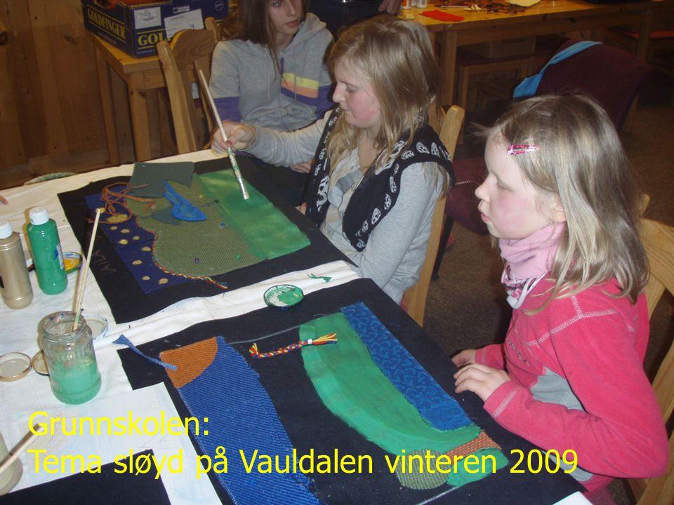 Tema sløyd på Vauldalen vinteren 2009