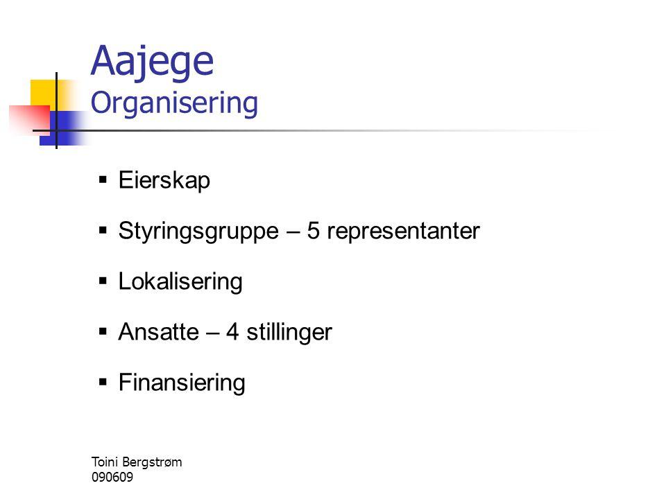 Aajege Organisering Eierskap Styringsgruppe – 5 representanter