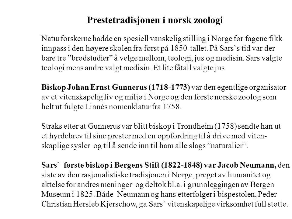 Prestetradisjonen i norsk zoologi